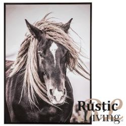 kader paard manen zwart wit wandposter